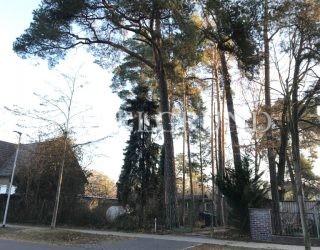 Ein vorderes und sonniges West – Grundstück in Falkenhain