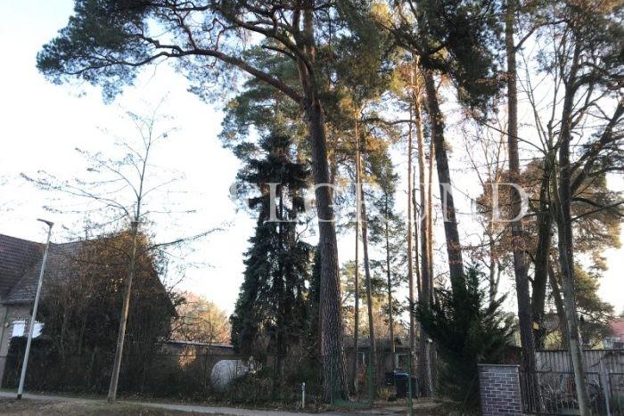 Leider konnten die Bilder von – Ein vorderes und sonniges West – Grundstück in Falkenhain – nicht geladen werden