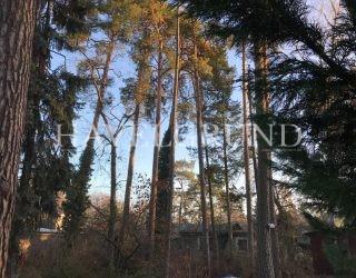 Ein hinteres West – Grundstück in traumhaft ruhiger Gegend in Falkenhain