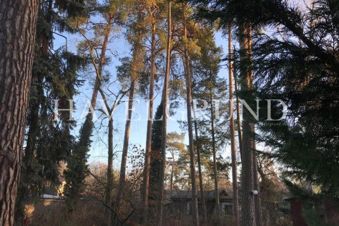 Leider konnten die Bilder von – Ein hinteres West – Grundstück in traumhaft ruhiger Gegend in Falkenhain – nicht geladen werden